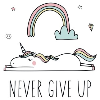 "T-Shirt Licorne ""Never Give Up"" (exclusivité)"